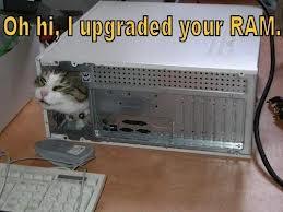 taskmgr.exe task manager